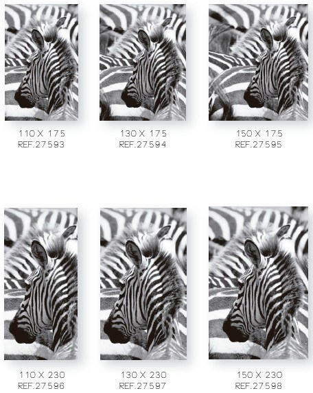 PATTERN OF ZEBRAS (1)
